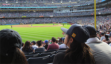 News Brief: NYIT Cheers on the Bronx Bombers