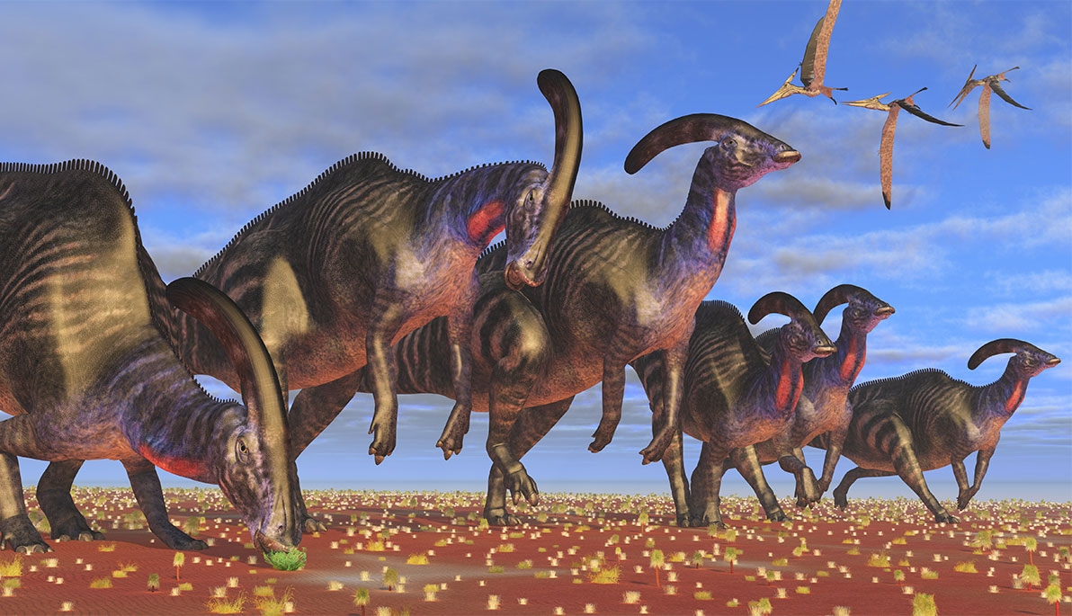 News Brief: Dinosaurs Who Toot Their Own Horns | Box | NYIT