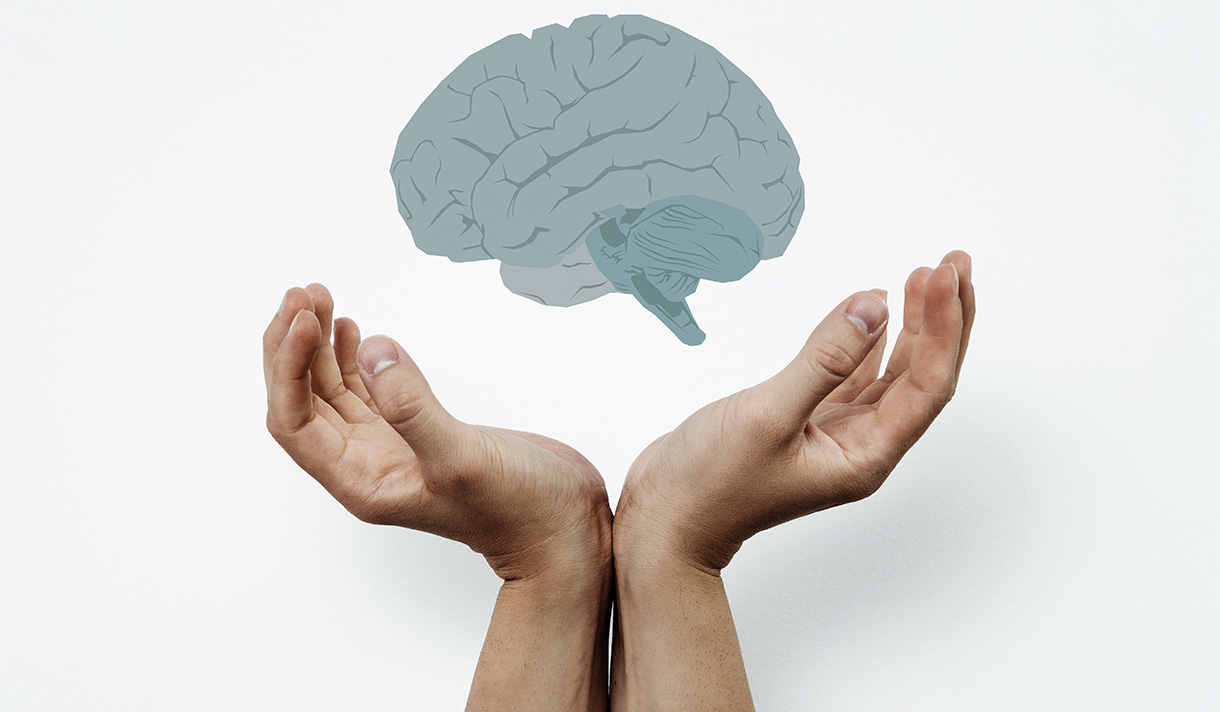 Graphic of a brain with hands below it